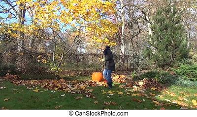 garden tree rake woman - seasonal autumn garden work...