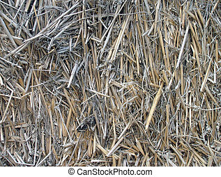 Background of Hay Stack