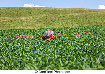Maize Crop Tractor Spraying