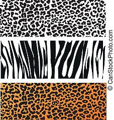 Animal skin pattern - Animal Skin Pattern set of leopard...