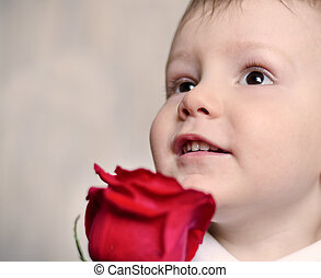 Adorable cherubic little boy with a red rose - Closeup of...