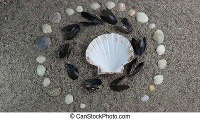 sea shells circular pattern - sea shell pattern on sand