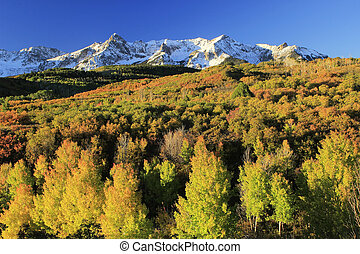 Dallas Divide, Uncompahgre National Forest, Colorado, USA