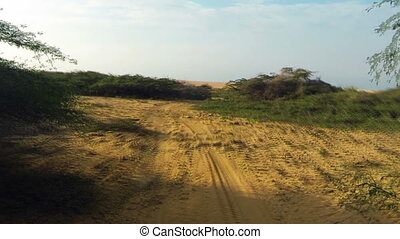 Driving to a Sand Dune