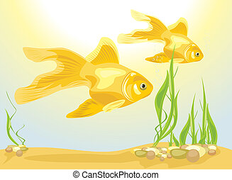 Two goldfishes among algae and pebbles. Vector illustration