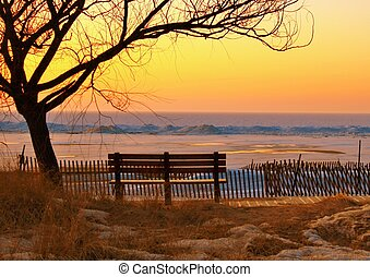 Winter At The Park - Lone park bench is the only witness to...