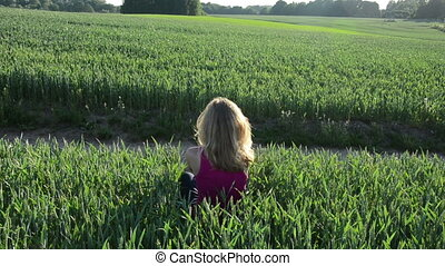 girl corn field lie - blonde woman lies down between the...