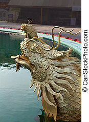 Dragon fish in the pool
