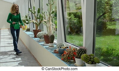 girl water cactus plant - woman water row of cactus plants...
