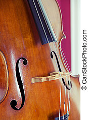 Double bass - Detail