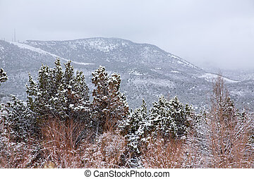 Nevada USA spring snow in the mountains - Nevada USA spring...