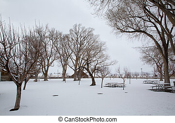 Nevada USA first snow in the park - Nevada USA first snow at...
