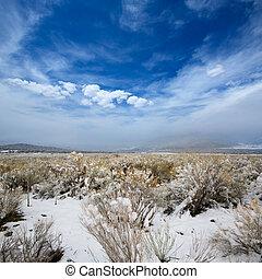 Nevada USA spring snow in the mountains - Nevada USA spring...
