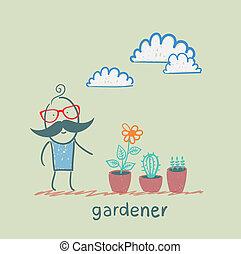 gardener looking for plants