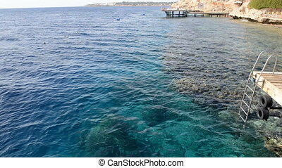 The reef with corals near beach at luxury hotel, Sharm el...