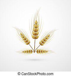 Vector Ears of Wheat Isolated on White Background