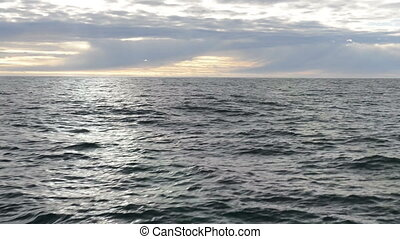 Seascape - Driving through Greenlandic waters with waves on...