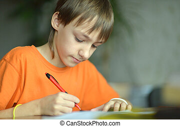 Pleasant boy at home - Nice little boy sitting and writing...