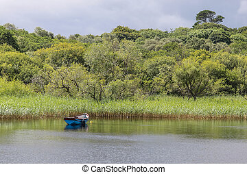Rowing boat on quiet lake in Killarney, County Kerry,...