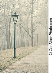 Street lamps in misty forest park