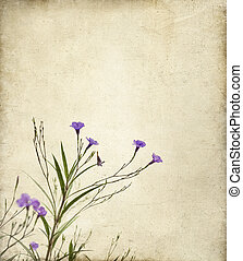 Purple Ruella Flowers Photo Illustration - Delicate purple...