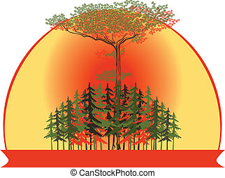 vector illustration of a forest at sunset