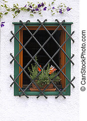 Window with bars - Flower pot in a decorative window with...