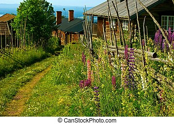 Rural village - Swedish landscape with narrow road between...