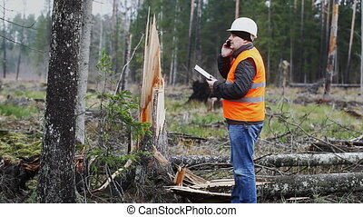 Forest Officer with tablet PC in destroyed forest episode 2