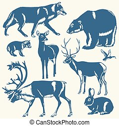 wild northern animals on a white ba - vector wild northern...