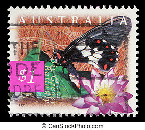 A stamp printed in Australia shows Big Greasy Butterfly and...