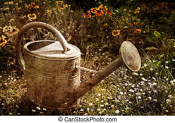 vintage watering can picture