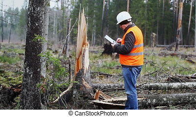 Forest Officer with tablet PC in destroyed forest episode 4