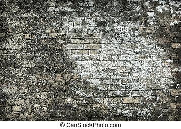 Toxic Wall