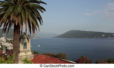 Panoramic, bell tower, palm tree, Bay of Kotor