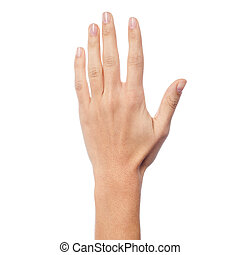 Back side of a woman hand - Woman hand showing five count