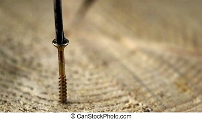 The screwing of a screw on the wood screw driver makes a...
