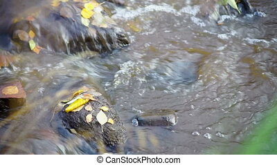 Fast river flow with bubbles and autumn leaves - Bubbles of...
