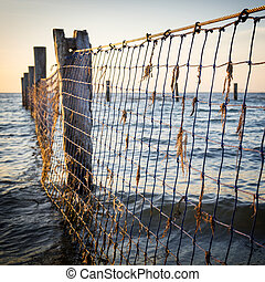 Seaside Nets - Netting between old wooden posts at the...