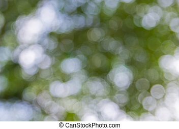 Green Bokeh, Abstract Background