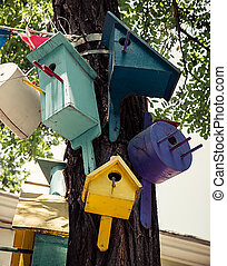 nesting box - colorful nesting boxes on a tree