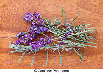 Freshly picked Lavender Flowers from the garden
