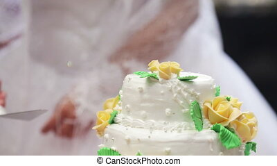 Put a piece of wedding cake - The bride and groom put a...