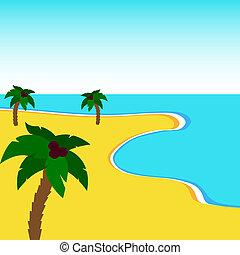 Coast and palm trees