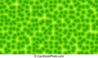 Simulated plant cells seamless loop - Computer generated...