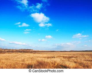 Autumn prairie bright sunny day