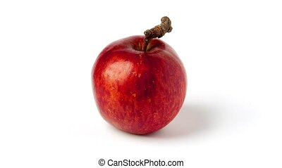 Apple wild and red rotating on white background
