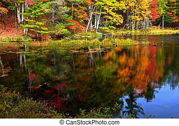 Autumn Reflections - Gorgeous fall foliage reflected in the...