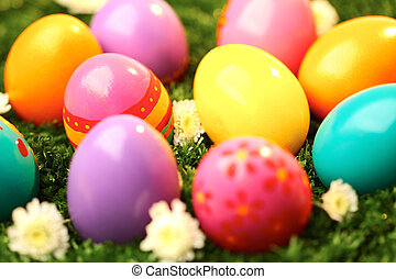 Easter eggs on grass - Close-up of colored Easter eggs in...