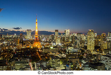 Tokyo Tower cityscape dusk - Aerial view Tokyo Tower...